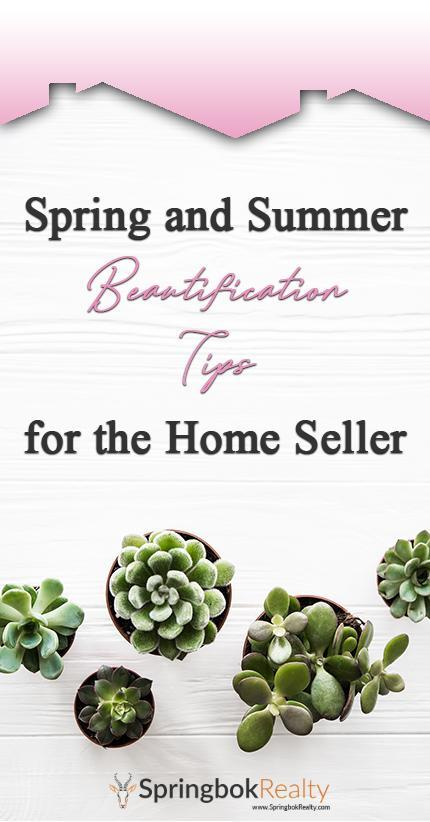 Spring and Summer Home Projects